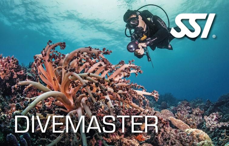 SSI - Divecon (Dive Control Specialist)